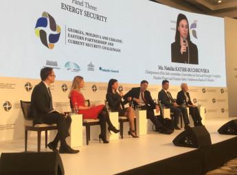 Диверсифікація постачання газу сприятиме енергетичній безпеці України, - Наталія Кацер-Бучковська (фото)