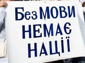 Микола Княжицький: Закон про мову потрібно ухвалити до другого туру президентських виборів