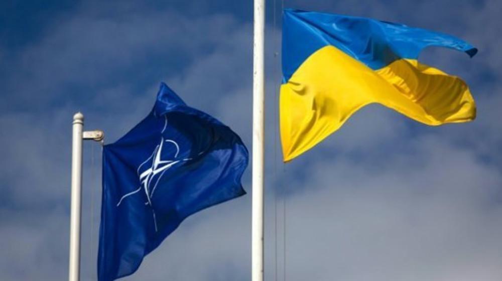 Ухвалення постанови про проведення у Києві Парламентської асамблеї НАТО в 2020 році – гарна відповідь Кремлю, - Юрій Береза